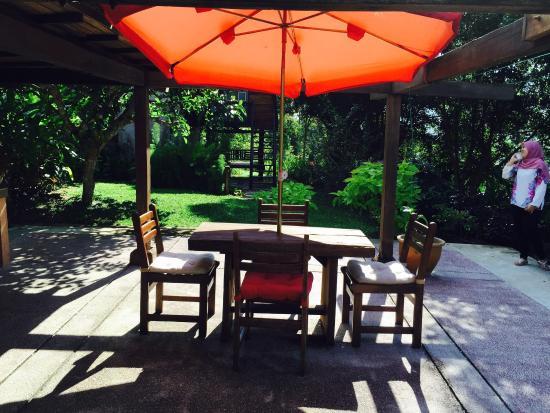 Janda Baik, Malaysia: Damai daun cottage