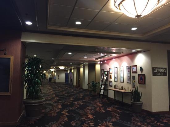 DoubleTree by Hilton Hotel Portland : Great value!