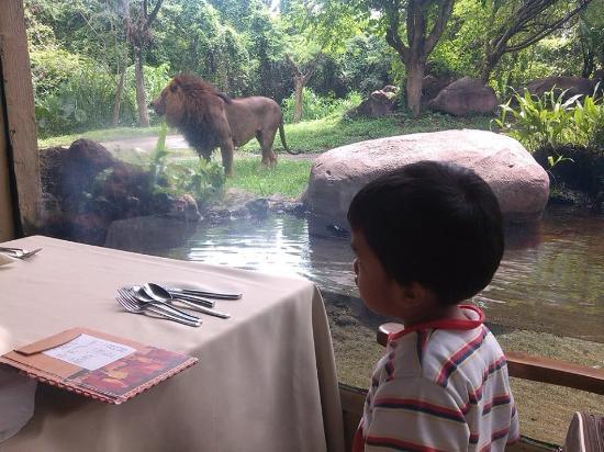 Tsavo Lion Restaurant: anak-anak sangat menyukai tempat ini