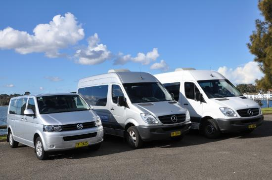 Blue Mountains Tours Luxury Mercedes Bus And Vw Caravelle Private