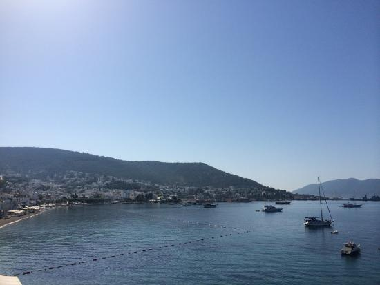 Bac Pansiyon : Best place to stay in Bodrum. Feels like home, feels like real Bodrum. Excellent service, friend