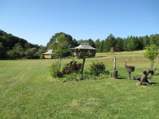 The Shire Eco Lodge: Looking across the site - plenty of privacy!