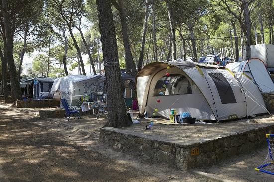 Camping & Bungalows  Interpals: Parcelas