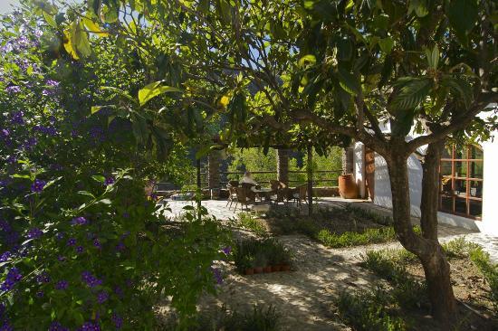 Casa Ana: Central courtyard