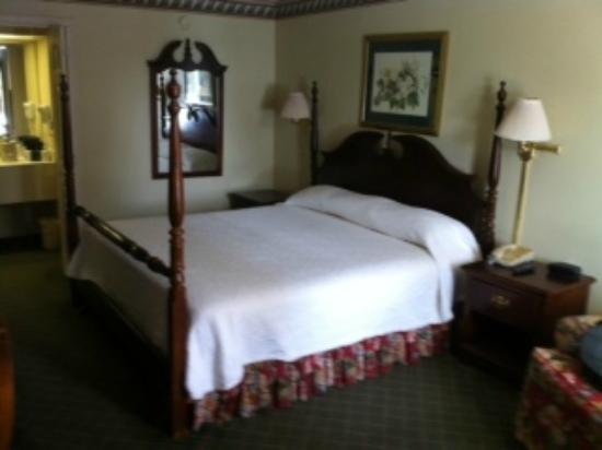 Phoenix Inn of South Carolina: Room