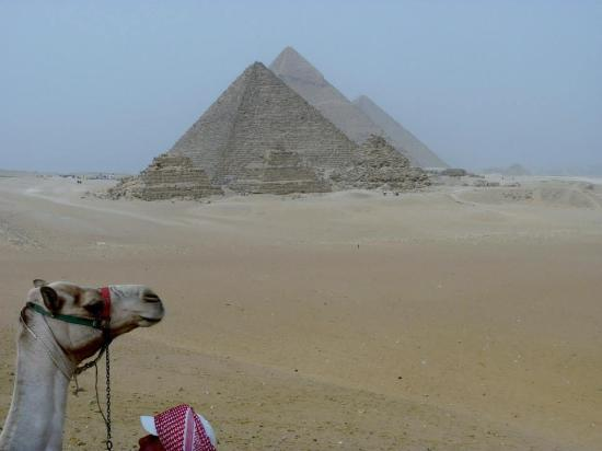 Sharm Wonders - Day Tours: Cairo by plane