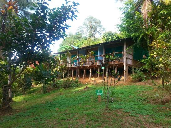 Cabinas El Mirador Lodge : Casita de cuento