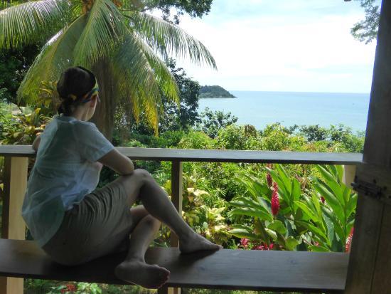 Cabinas El Mirador Lodge: Una terracita con vistas