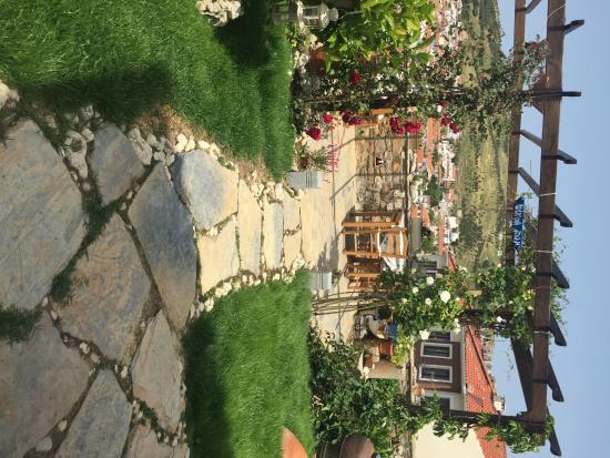 Alesta Otel: bahçe