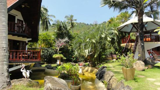 Coco Palace Resort : Garden