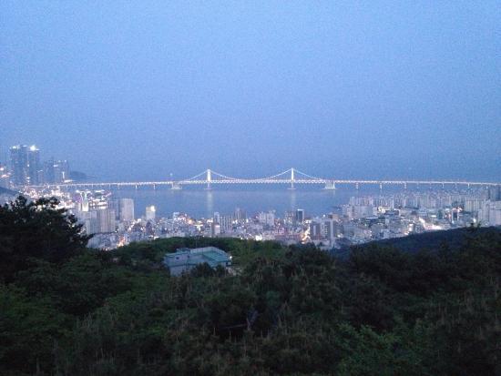 Busan Harbor Bridge: Мост хорошо виден с обзорной площадки обсерватории. Особенно вечером.