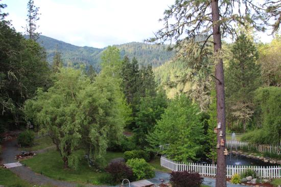 Flery Manor B&B: View from the back deck