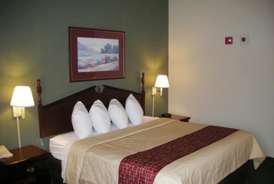 Red Roof Inn Carrollton: Guestroom