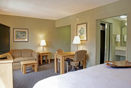 Hampton Inn & Suites by Hilton San Jose Airport: Studio Room