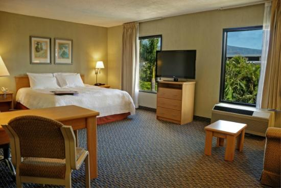 Hampton Inn & Suites by Hilton San Jose Airport: Studio