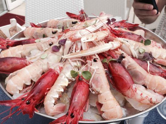 Gamberi rossi e scampi picture of ristorante corallo - Ristorante corallo santa maria al bagno ...