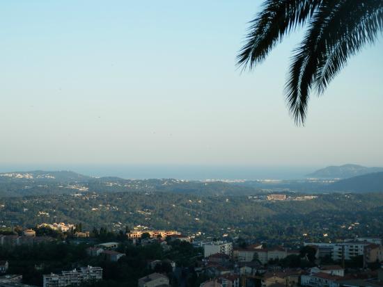 Les Palmiers- Grasse : Vue de la terrasse...