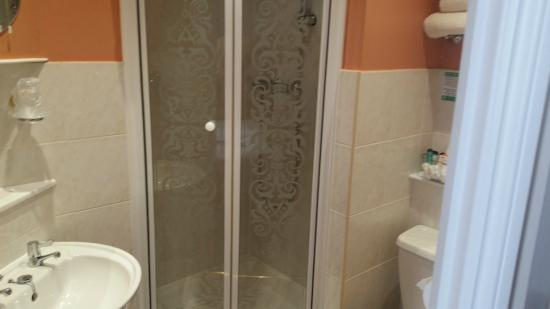 The Cornubia Guest House: Shower - Very clean