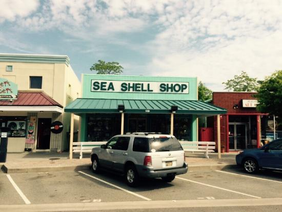 Sea Shell Shop