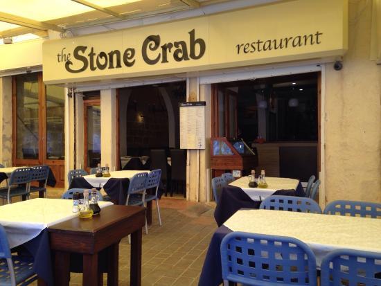 The Stone Crab: Stone Crab