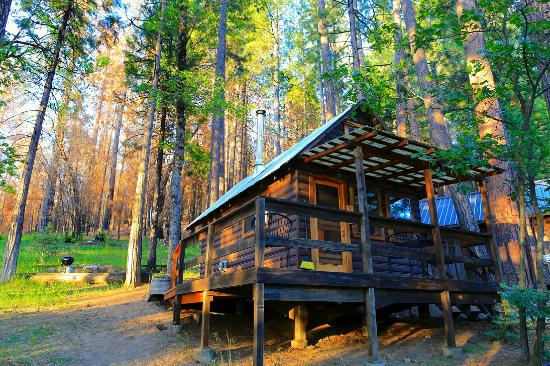 Sugar pine cabin exterior picture of sunset inn yosemite for Cabins in yosemite valley