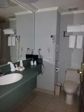 Beverly Hills Hotel & Suites : bathroom