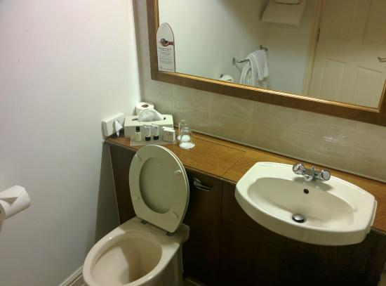 Tankersley Manor Hotel: Sink area