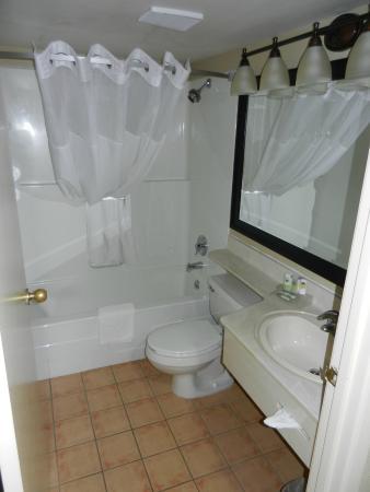 Country Inn & Suites By Carlson, Winnipeg, MB: Bathroom