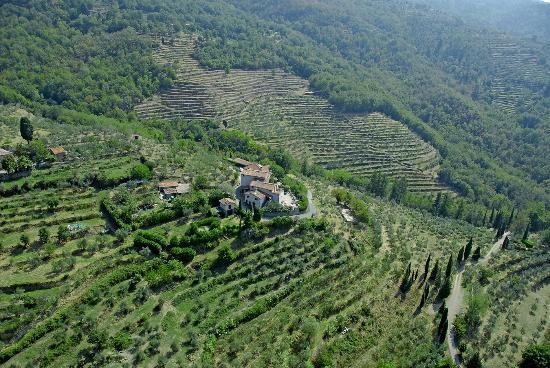 Borgo Mocale Bio Agriturismo