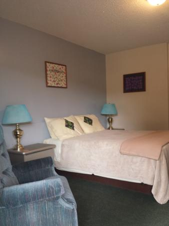 The Riviera Motel : traditional 1 queen room