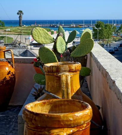 Corte di Nettuno : Blick von der Dachterrasse zum Hafen