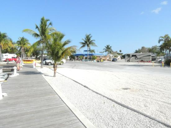 Beach area with chaise lounges and chairs - Picture of Sugarloaf ...