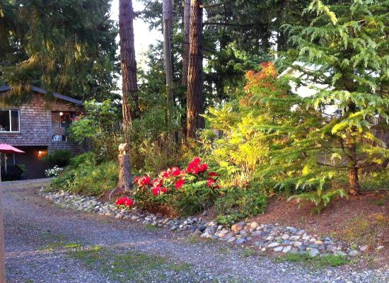 At Nautica Tigh Bed & Breakfast: Woodsy location under majestic firs.