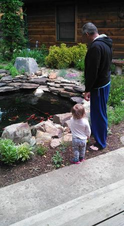Hiwassee, VA: Fish pond at the front