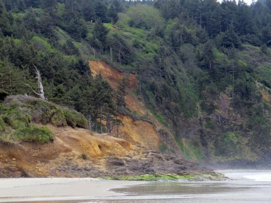 Cape Lookout State Park: Cliffs and Beach