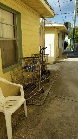 The Molloy Gulf Front Motel and Cottages: Shopping Carts