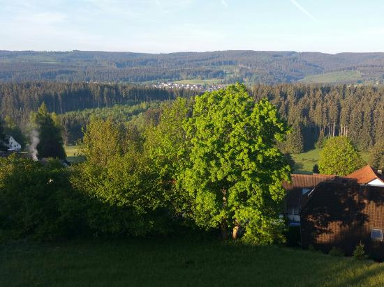 Schwarzwaldgasthof zum Pfauen