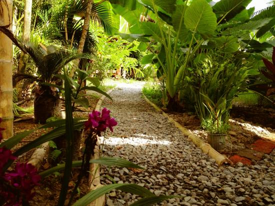 Indostyle landscaping Picture of La Jungla Tropical Bungalows