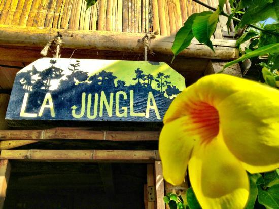 LA JUNGLA TROPICAL BUNGALOWS EcuadorMompiche Villa Reviews