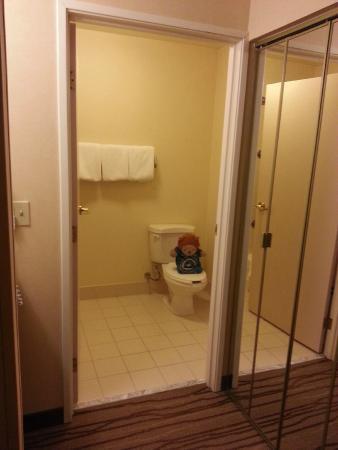 Courtyard Seattle North/Lynnwood Everett: Roary in the  Bathroom