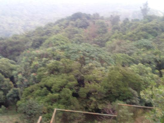 Bhagamandala, Indie: View fro Talcauvery