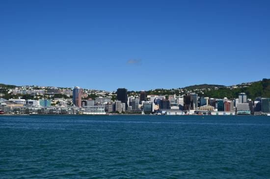 Rydges Wellington: Looing at the harbour from the other side of the harbour
