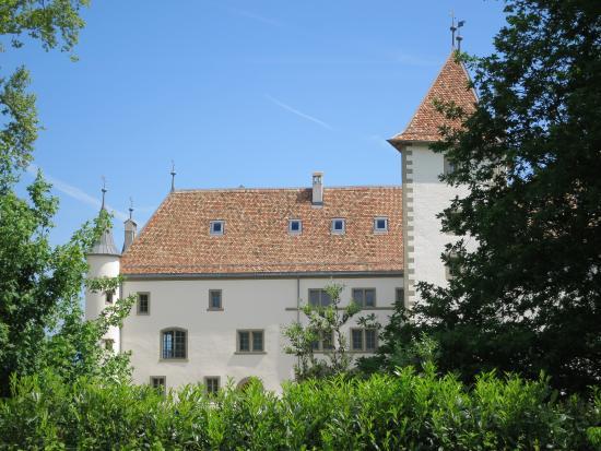 Chateau d' Allaman