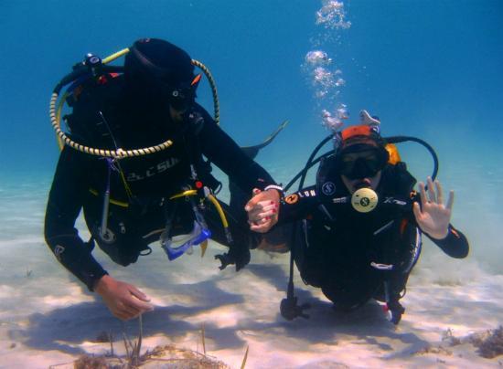 Skualo Dive Center