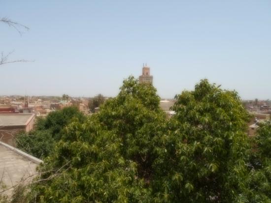 La Terrasse Ben Youssef : vue de la terrasse