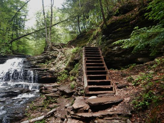 Ricketts Glen State Park: These Were The Only Wooden Steps