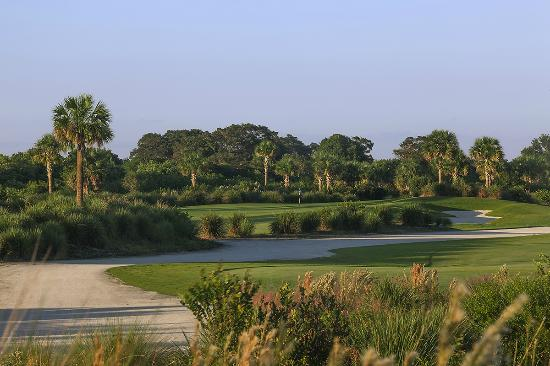 Osprey Point Golf Course: Falcon Course