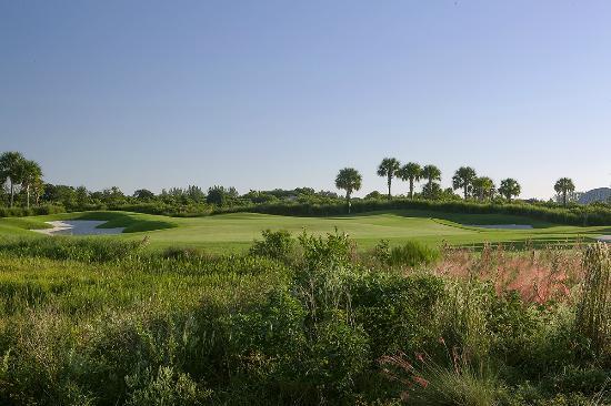 Osprey Point Golf Course: Raven Course