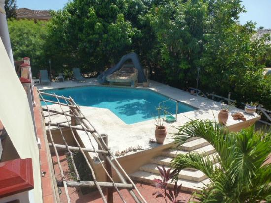 Caribbean Shores Bed & Breakfast: The pool