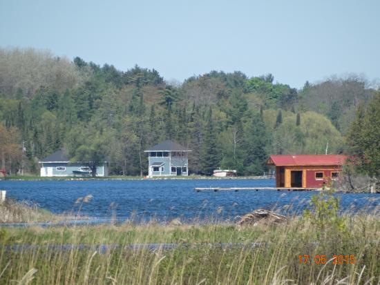 Bellaire, MI: Marsh